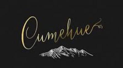 Bodega Cumehue
